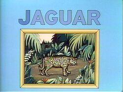Jaguarpuzzle