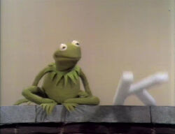 Kermit-KFall