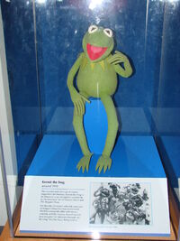 Kermit smithsonian case