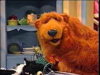Bear302i