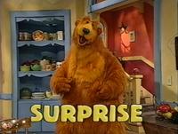 Bear306d