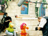 When Muppets Dream of Peace