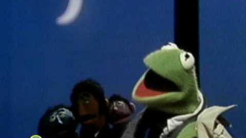 Sesame Street This Frog