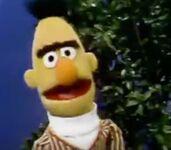 Bert Through the Years