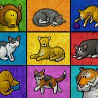 Elmo S World Cats Muppet Wiki Fandom