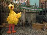 BigBird-ABC-DEF-GHI-1980s