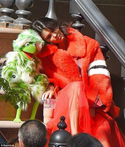 File:Kermit jenner.jpg