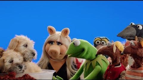 Muppets Most Wanted at Animal Planet's 2014 Puppy Bowl - The Piggy Bowl