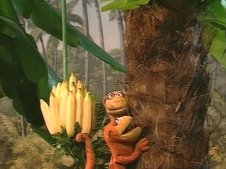 Episodio 805 Muppet Wiki Fandom Powered By Wikia