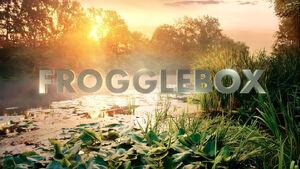 Frogglebox