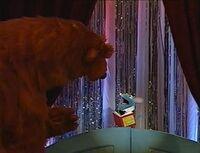 Bear426g