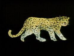 L Leopard Confetti