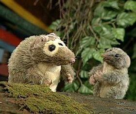 Thepossums