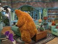 Bear124h