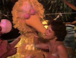 Kiss Maria Big Bird 1316
