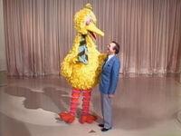 Mike Walsh Show Big Bird 01