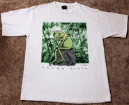 Changes t-shirt kermit think green 2