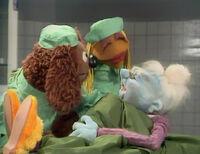 Vet's Hospital TMS 404