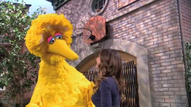 Episode 4211 | Muppet Wiki | FANDOM powered by Wikia