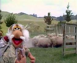 FraggleRock-Intl-UncleTravelingMatt-SheepHerder