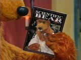 Scientific Bear (magazine)