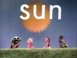 AM SUN
