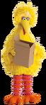 BigBirdBox