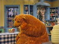 Bear313g