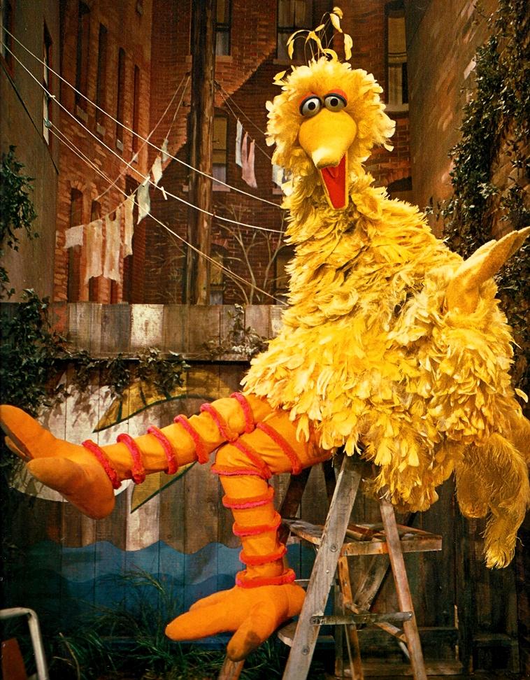 Big Bird Through the Years | Muppet Wiki | FANDOM powered by