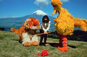 Big Bird in Japan photo Mt Fuji