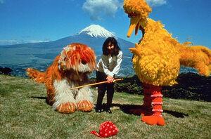Big Bird in Japan photo Mt Fuji