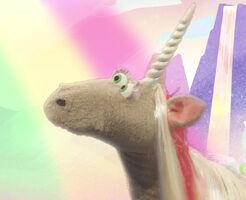 NTL-Unicorn