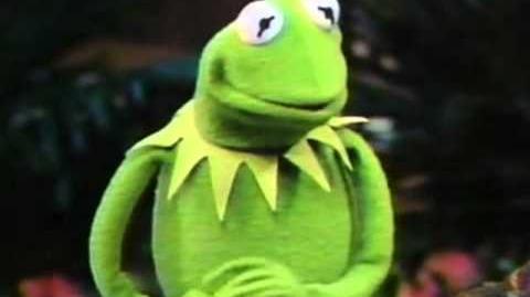 Kermit on Pat Sajak, joke spoofs