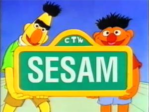 Sesam-90s