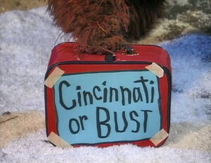 Snuffy Cincinnati or Bust