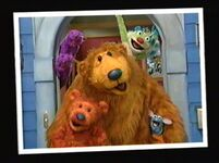 Bear213i
