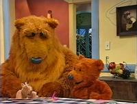 Bear306c