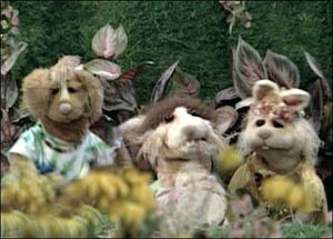 Bear-rabbits