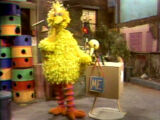 Big Bird Sketches: Sesame Street