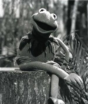Kermit log
