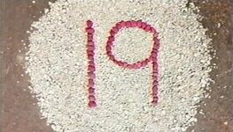 19Pebbles