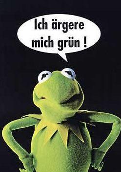 Kermitposter-german
