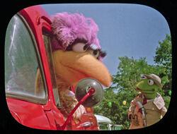 Reporter Kermit Follow That Bird