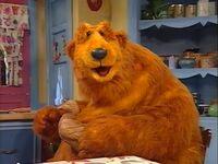 Bear415h
