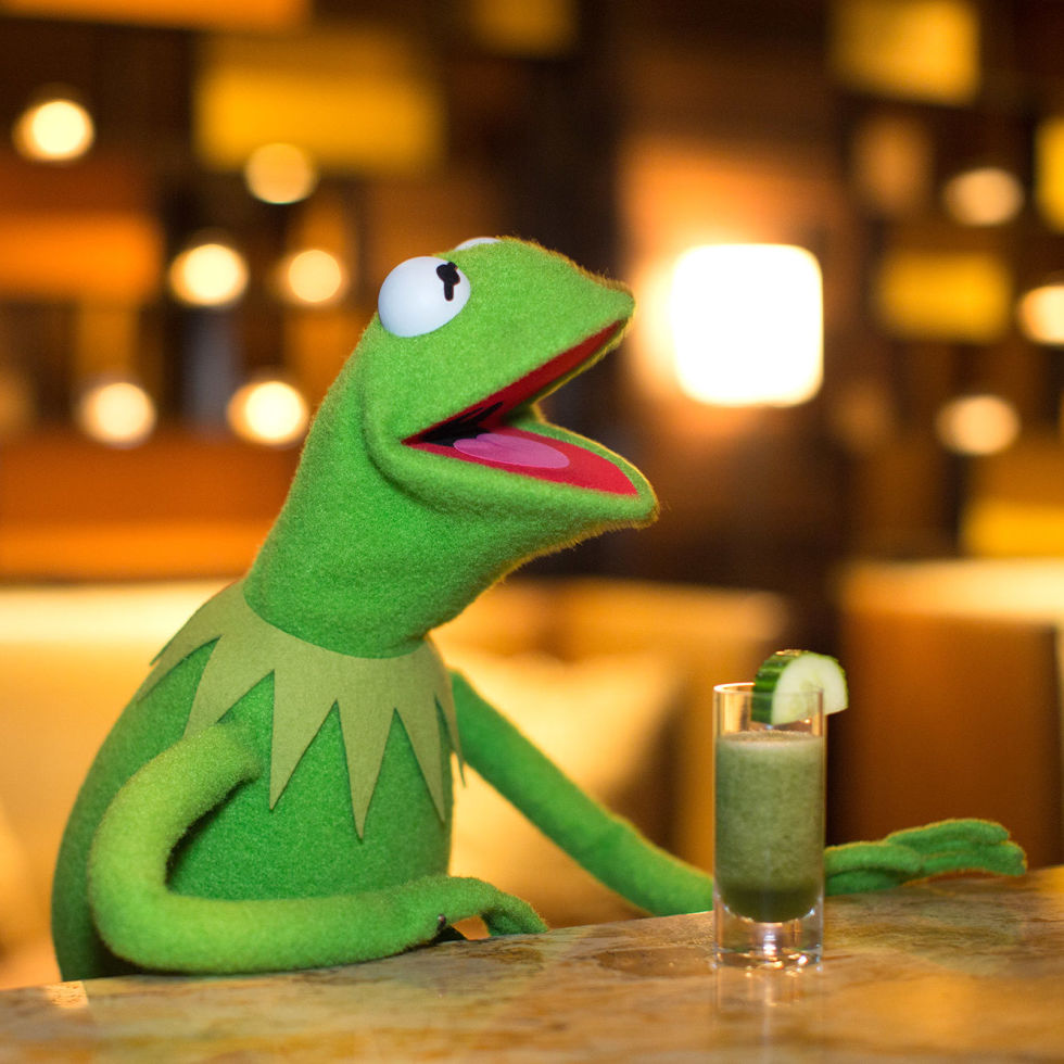 Image result for kermit and piggy drinking