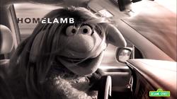 Homelamb01