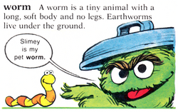 Dictionary worm Slimey