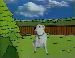 Word.DOG-2
