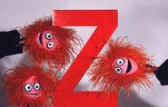 ZizzyZoomersZ