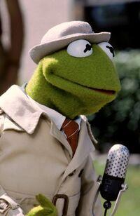 Follow That Bird Reporter Kermit